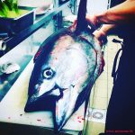 restaurant-sushi-marseille-thon-bio