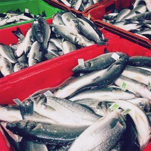 sushi-bio-marseille 13